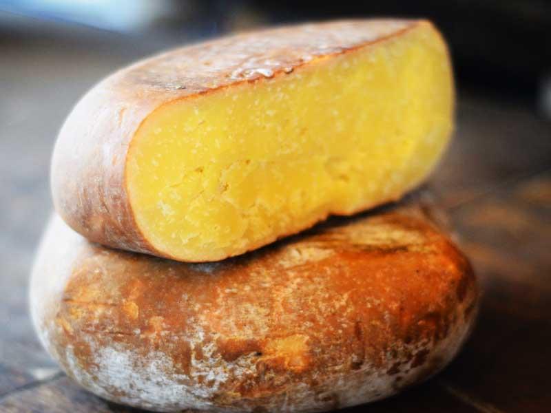 Rebost queso mahonés